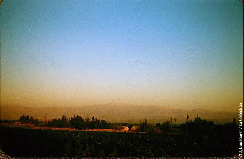 Photographie (résolution écran) : Fonds photographique Jacques Dupâquier — Voyage en URSS en 1956 — Ouzbekistan : «Campagne près de Tachkent-Le Tian Chan en arrière-plan»