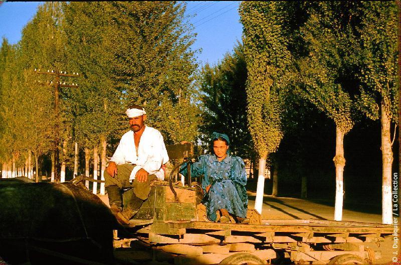 Photographie (résolution écran) : Fonds photographique Jacques Dupâquier — Voyage en URSS en 1956 — Ouzbekistan : «Rentrée du travail»