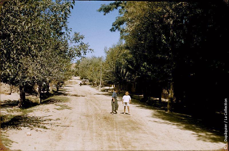 Photographie (résolution écran) : Fonds photographique Jacques Dupâquier — Voyage en URSS en 1956 — Ouzbekistan : «Rue du kolkhoze Staline près de Tachkent»