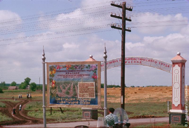 Photographie (résolution écran) : Fonds photographique Jacques Dupâquier — Voyage en URSS en 1964 — De Moscou au Caucase : «Le sovkhoze Dvodianaïa Balka (Territoire de Krasnodar)»