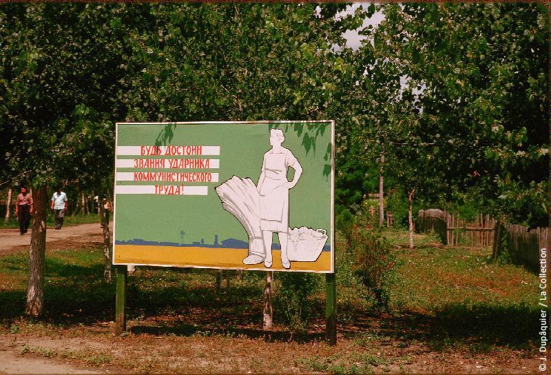 Photographie (résolution écran) : Fonds photographique Jacques Dupâquier — Voyage en URSS en 1964 — De Moscou au Caucase : «Panneau de propagande au sovkhoze Dvodianaïa Balka (Territoire de Krasnodar)»