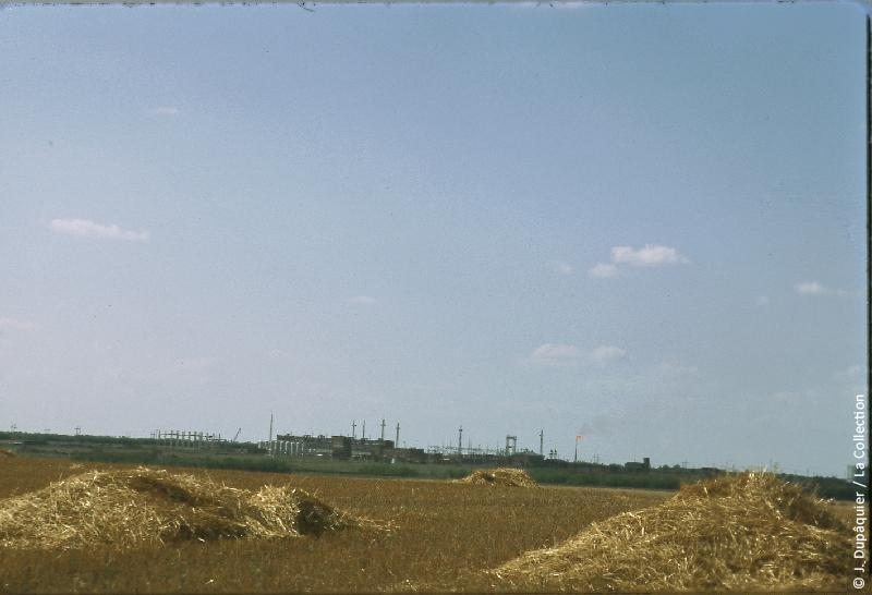 Photographie (résolution écran) : Fonds photographique Jacques Dupâquier — Voyage en URSS en 1964 — De Moscou au Caucase : «Plaines du Kouban près de Kouchevskaia»