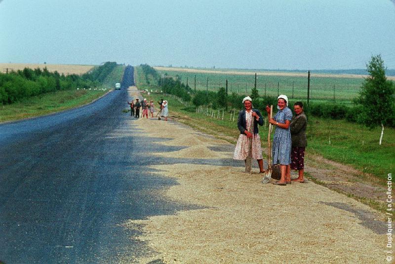Photographie (résolution écran) : Fonds photographique Jacques Dupâquier — Voyage en URSS en 1964 — Sur la route de Moscou-Minsk Smolensk Borodino : «Sur la route de Smolensk-On fait sécher le blé»