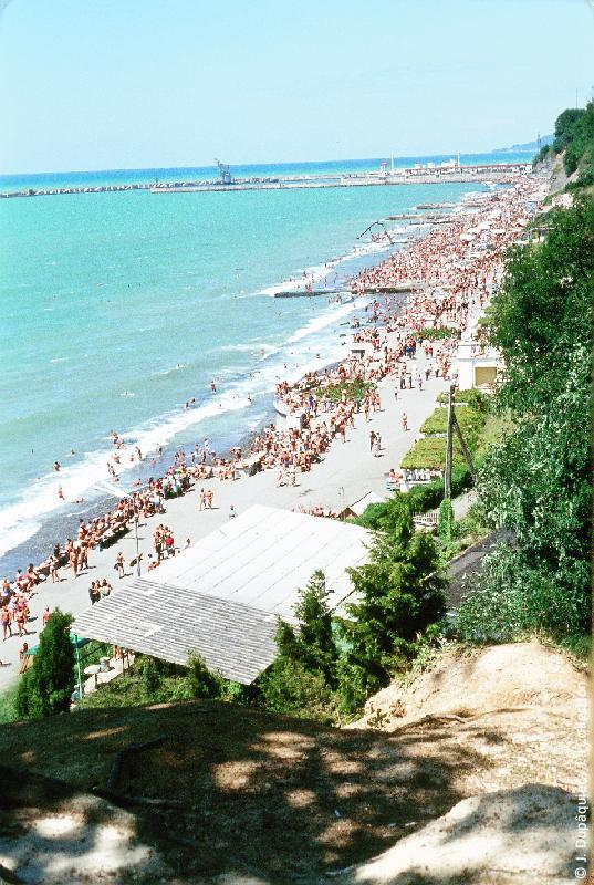 Photographie (résolution écran) : Fonds photographique Jacques Dupâquier — Voyage en URSS en 1964 — Caucase et Georgie : «Vue générale de la plage de Sotchi»