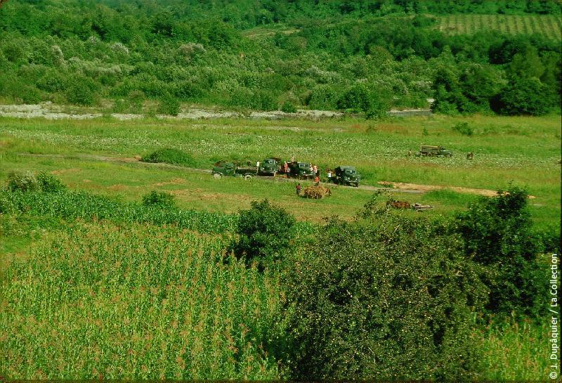 Photographie (résolution écran) : Fonds photographique Jacques Dupâquier — Voyage en URSS en 1964 — Caucase et Georgie : «Sur la route de Krasnaia Poliana-Vallée de la rivière Mzymta»