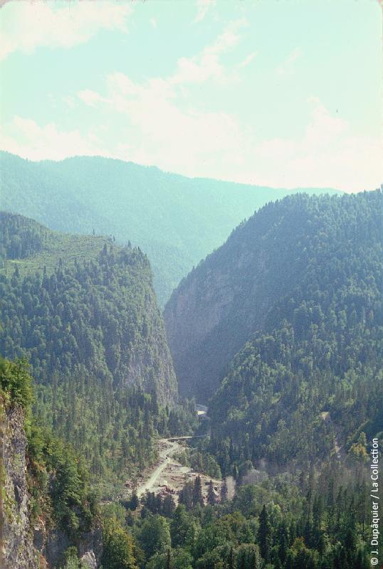 Photographie (résolution écran) : Fonds photographique Jacques Dupâquier — Voyage en URSS en 1964 — Caucase et Georgie : «Abkhazie-Gorges de la Youpchara»