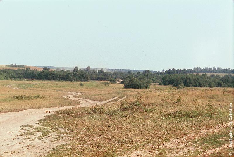 Photographie (résolution écran) : Fonds photographique Jacques Dupâquier — Voyage en URSS en 1964 — Sur la route de Moscou-Minsk Smolensk Borodino : «Sur la route de Borodino-Paysage entre Viazma et Gjatsk»
