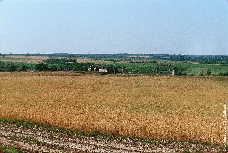 Photographie (résolution écran) : Fonds photographique Jacques Dupâquier — Voyage en URSS en 1964 — Sur la route de Moscou-Minsk Smolensk Borodino : «Sur la route de Borodino-Vallée de la Kolotch»