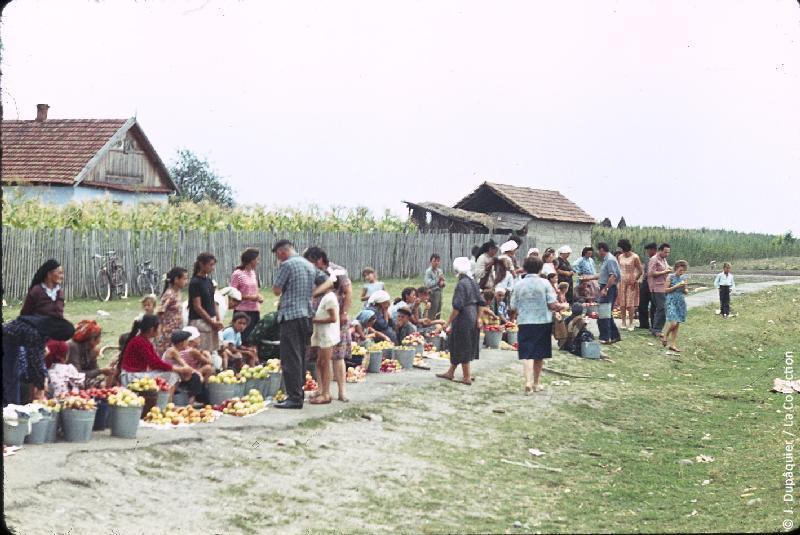 Photographie (résolution écran) : Fonds photographique Jacques Dupâquier — Voyage en URSS en 1964 — Caucase et Georgie : «Sur la route de Piatigorsk-Marché près de Baksan»
